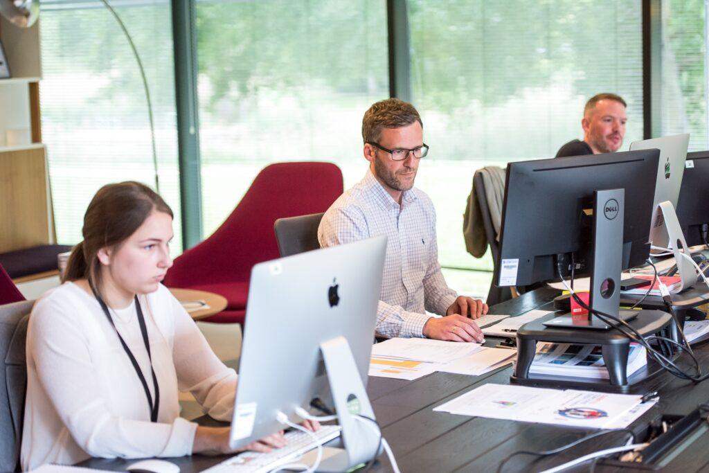 IT staff augmentation - software development - programming